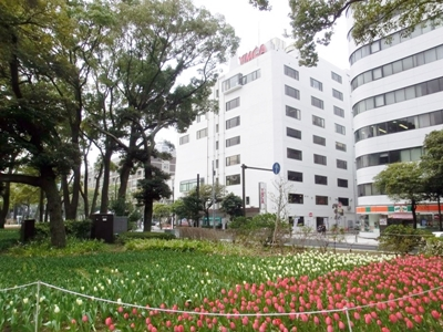 橫濱YMCA專門學校日本語科-日本留學首選